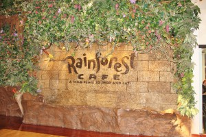 Rainforest Cafe: A Little Adventure With Your Meal