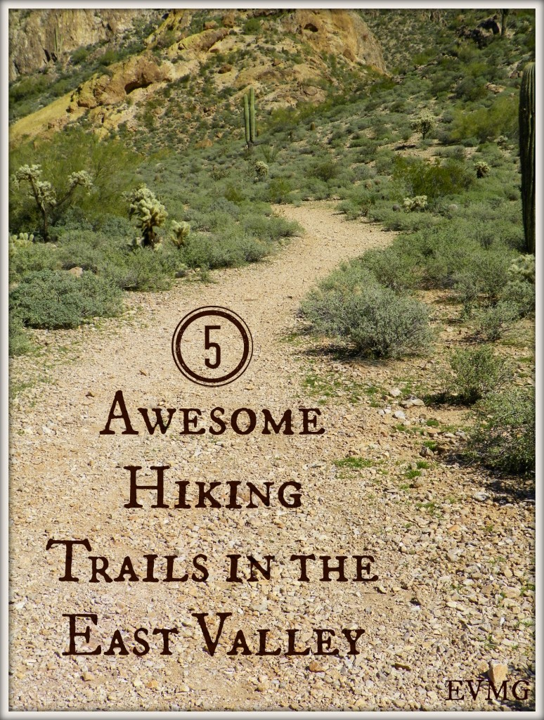 Hiking Trails in the East Valley