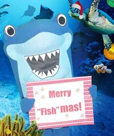 Keep the Kids Busy during Winter Break at SEA LIFE