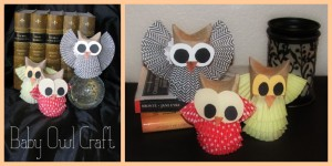 Adorable Baby Owl Craft