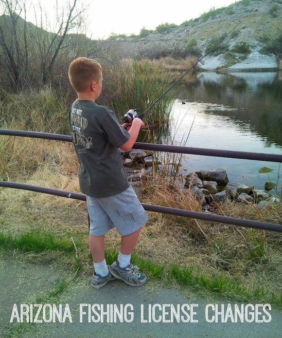 arizona fishing license changes east valley mom guide